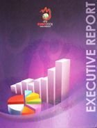 UEFA Euro 2008. Executive Report + DVD