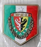 WKS Slask Wroclaw magnet (official product)